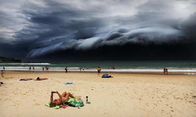 Chiêm ngưỡng những bức ảnh thiên nhiên đoạt giải Ảnh báo chí thế giới 2016