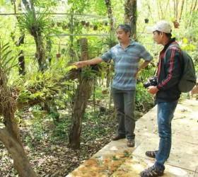 Khu bảo tồn lan rừng độc nhất Tây Nguyên