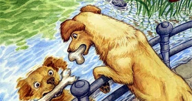 dog-and-a-bone