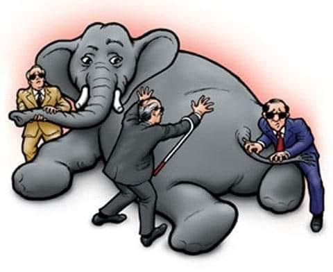 Sờ voi
